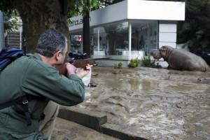 Banjir Di Georgia, Puluhan Hewan Buas Berkeliaran
