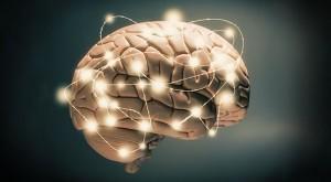 Ilmuwan Jepang Temukan Lokasi Kebahagiaan Di Dalam Otak