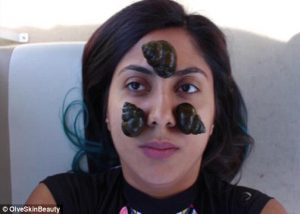 Blogger Ini Gunakan Siput Hidup Untuk Perawatan Kecantikan