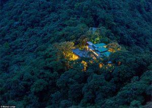 Wow, Hotel Mewah Ini Berdiri Di Tengah Hutan Belantara