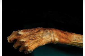 Seniman Ini Buat Tato Mirip Tato Milik Mumi Tertua
