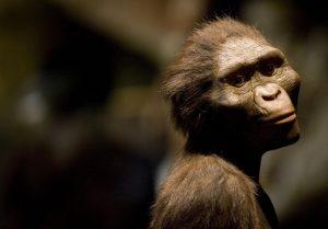 Penelitian Terbaru Sebut Manusia Pertama Bukan Dari Afrika
