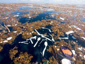 Lautan Karibia Dipenuhi Sampah Manusia