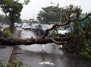 Badai Supercell Hantam Afrika Selatan, 11 Orang Tewas