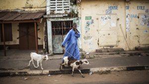 Dituduh Mengubah Manusia Menjadi Kambing, Pria Nigeria Dikeroyok Warga