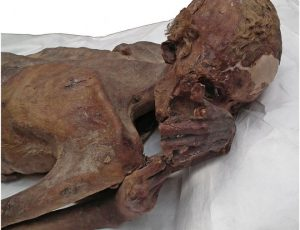 Tato Figuratif Tertua Ditemukan Pada Mumi Berusia 5.000 Tahun
