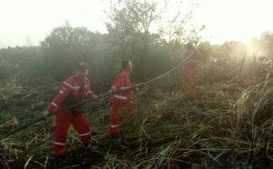 Brigade Pengendalian Kebakaran Hutan Kerahkan Semua Upaya Untuk Antisipasi Potensi Karhutla