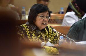 Tangani Pencemaran Sungai, Menteri LHK Terbitkan SK Untuk 7 Sungai