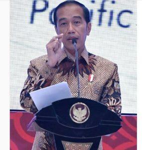 Indonesia Punya SDA Melimpah, Jokowi: Setop Ekspor Bahan Mentah