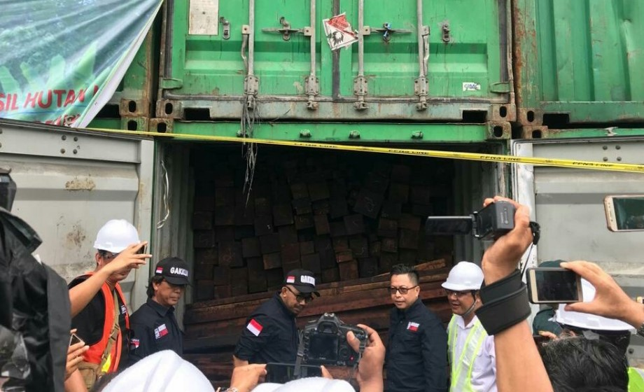 Kementerian LHK Berhasil Amankan Kayu Ilegal Senilai 12 Milyar Rupiah