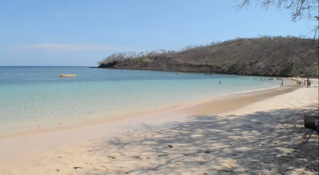 The Beauty And Uniqueness Of Oa Beach and Rako Beach in East Flores