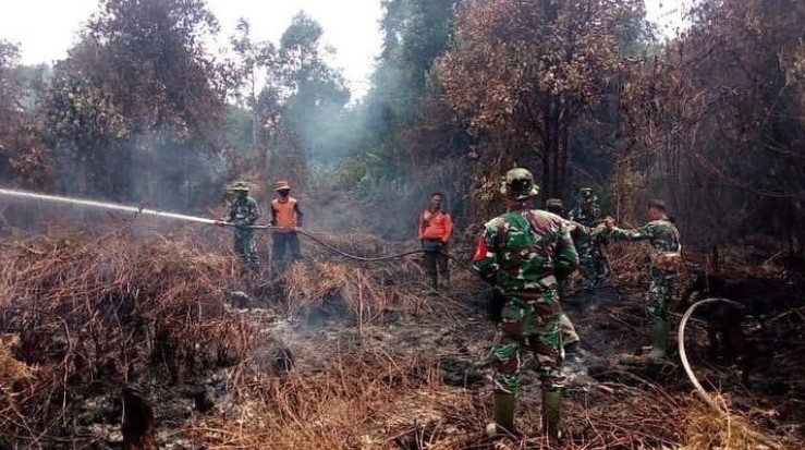 Debat Capres, Kementerian LHK: Terminologi Tidak Ada Kebakaran Adalah Tidak Terjadi Bencana