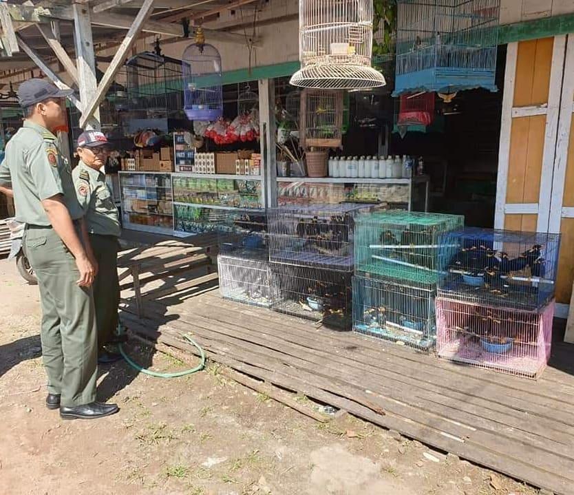 Balai Gakkum Kalimantan Sita 119 Burung Dilindungi, Dua Orang Ditetapkan Sebagai Tersangka