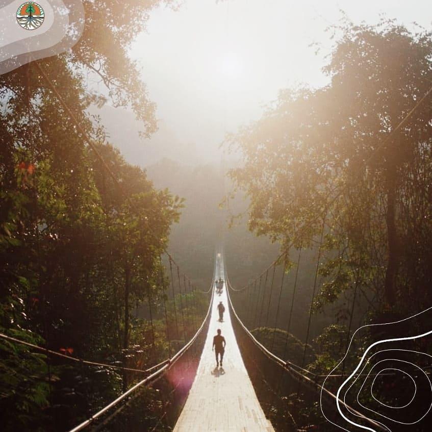 Jembatan Gantung Terpanjang Di Asia Tenggara Ada Di Sukabumi